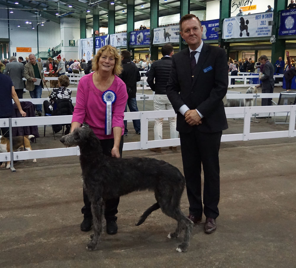 Midland Counties Dog Show